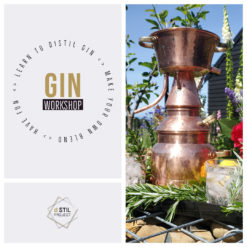 GIN Workshops
