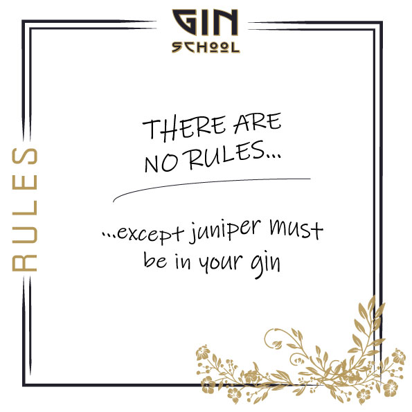 No-Rules-at-Gin-School