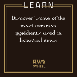 Learn to make rum